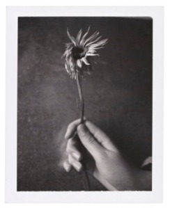 Patti Smith, Jesse with Flower, 2003. © Patti Smith