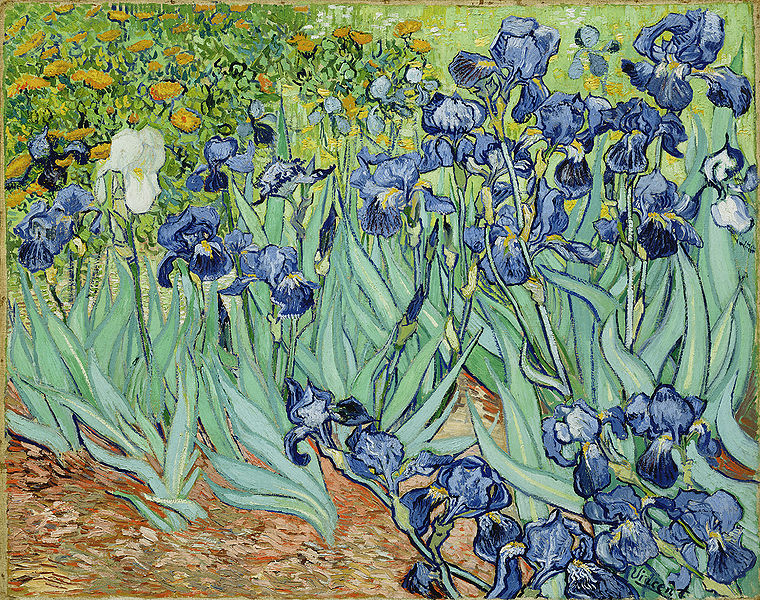 Irises, Van Gogh (1889)