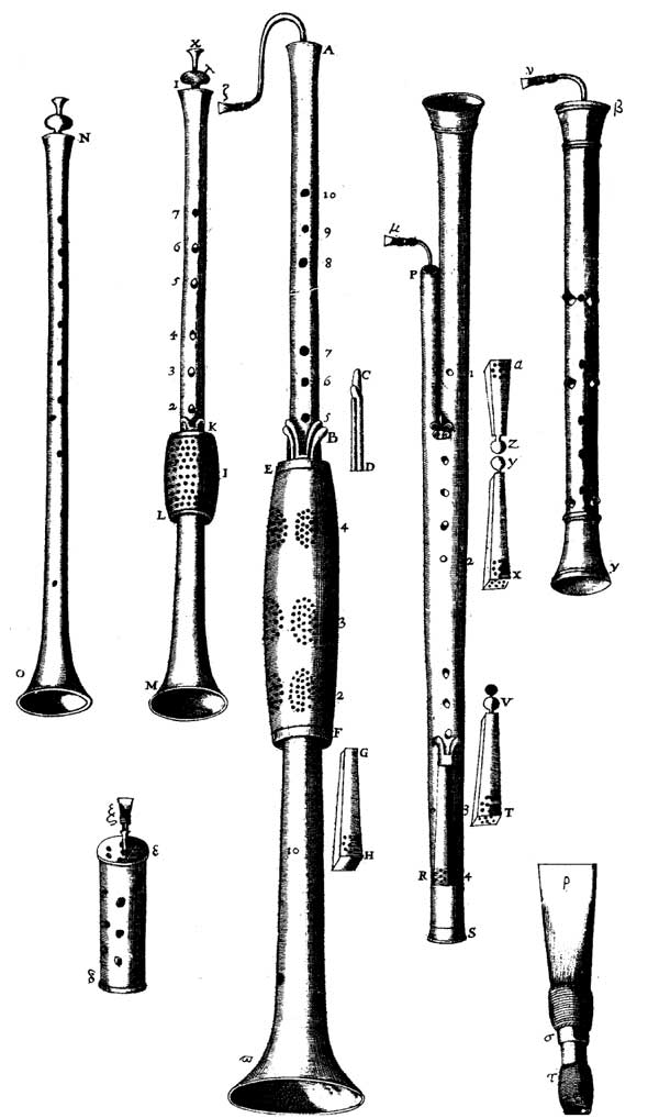 The bassoon's early relatives